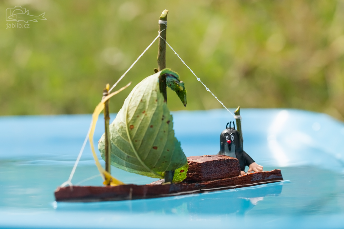 Krteček na lodi