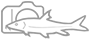 fotoblog libora jabůrka Logo