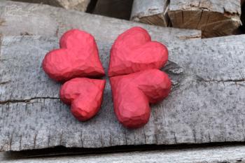 Lipová srdíčka - Lípa srdčitá (Tilia cordata)