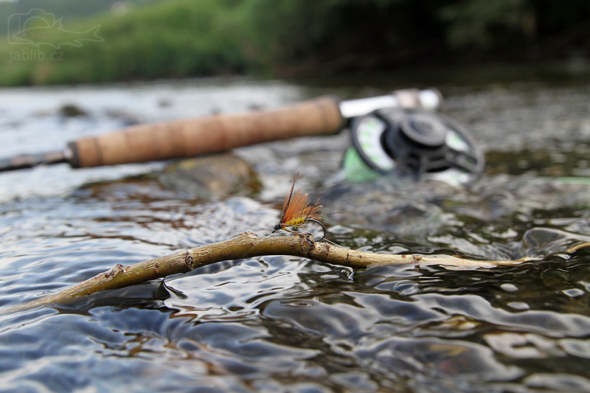 Muškaření na řece